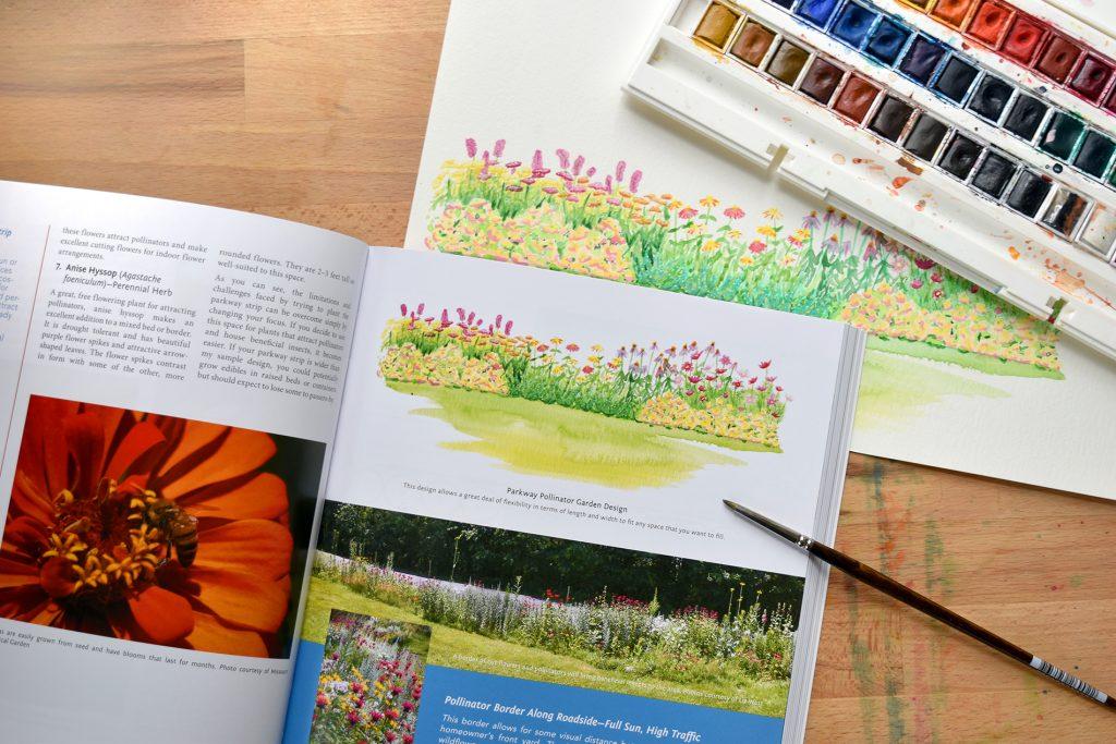 Sample Illustration from Gardening Like a Ninja
